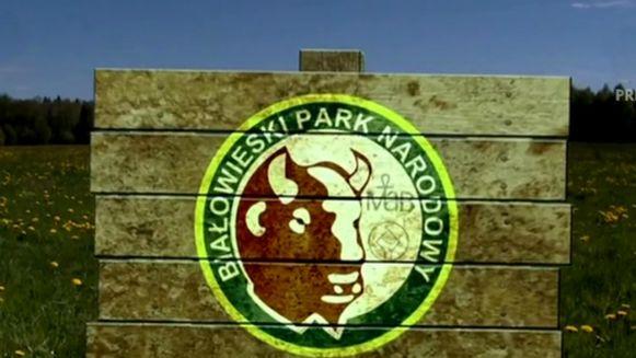 bialowieski-park-narodowy