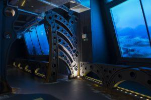 na-ogromnych-ekranach-przypominajacych-akwaria-mozna-podziwiac-mieszkancow-oceanow-sprzed-milionow-lat
