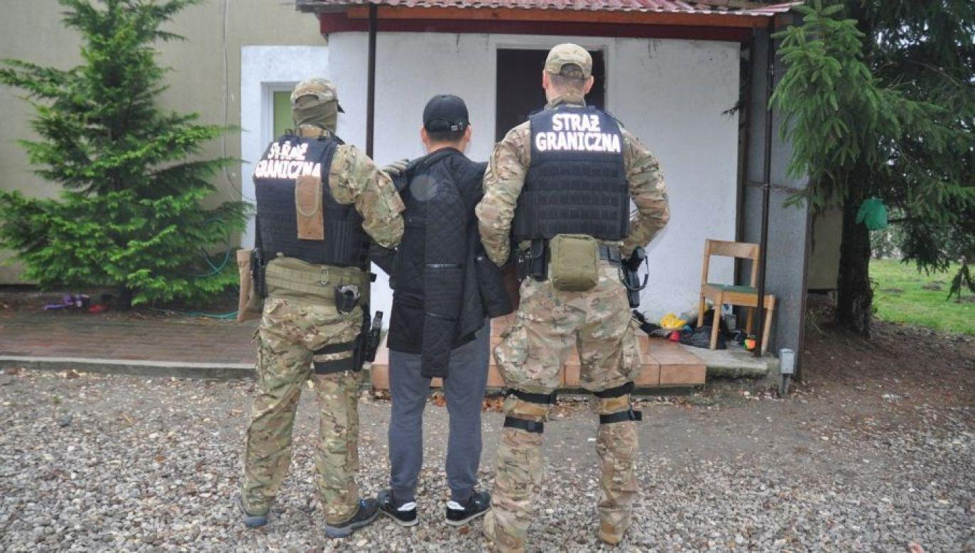 Zatrzymanie jednego z liderów gangu (fot. SG)