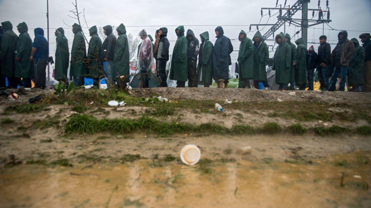 Imigranci szukają nowych szlaków do zachodniej Europy (fot. PAP/EPA/ZOLTAN BALOGH)
