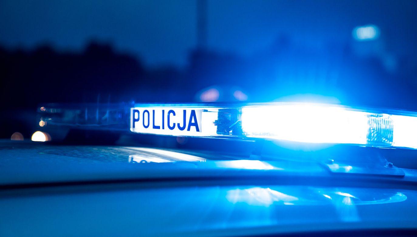 Do śmiertelnego wypadku doszło w gminie Stąporków (Świętokrzyskie) (fot. Shutterstock/ASkwarczynski)