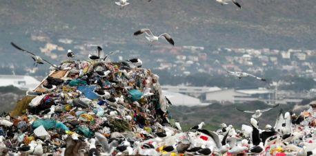 Dlaczego warto segregować odpady?