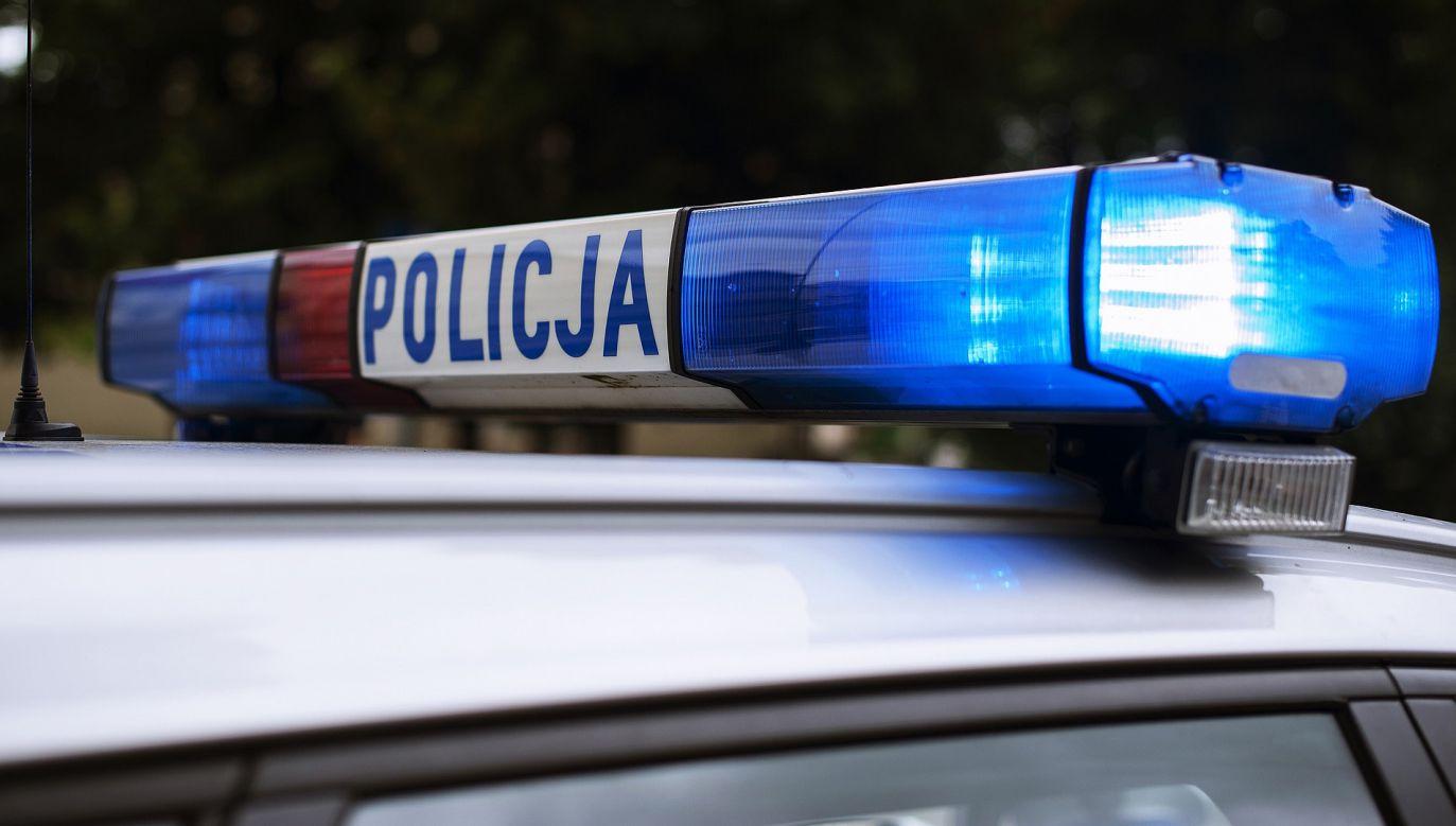 W pościg włączyły się wkrótce dodatkowe patrole z Lubina oraz z Legnicy (fot. pixabay.com/ arembowski)