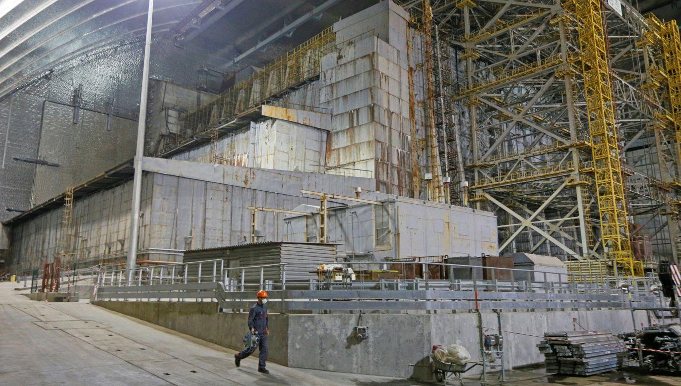 Naukowcy zbadali grzyba obrastającego ściany reaktora jądrowego w Czarnobylu (fot. REUTERS/Valentyn Ogirenko)