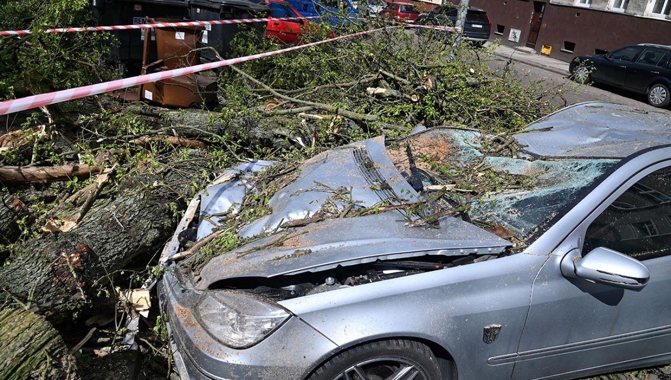 Strażacy odnotowali cztery ofiary śmiertelne (fot. PAP/Marcin Bielecki)