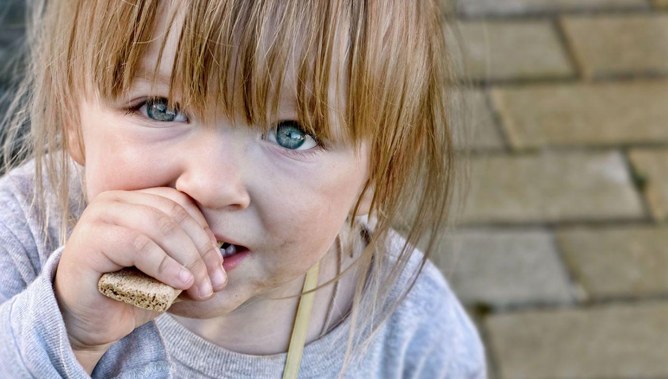 Udało się ustalić, jak przywrócić życie w zniszczonych jelitach (fot. Shutterstock/Slava Samusevich)