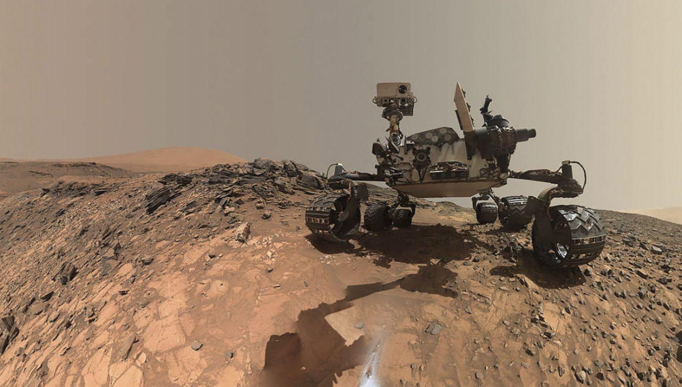 W swojej pracy naukowcy posłużyli się danymi pochodzącymi m.in. z łazika Curiosity (fot. REUTERS/NASA/JPL-Caltech/MSSS/Handout)