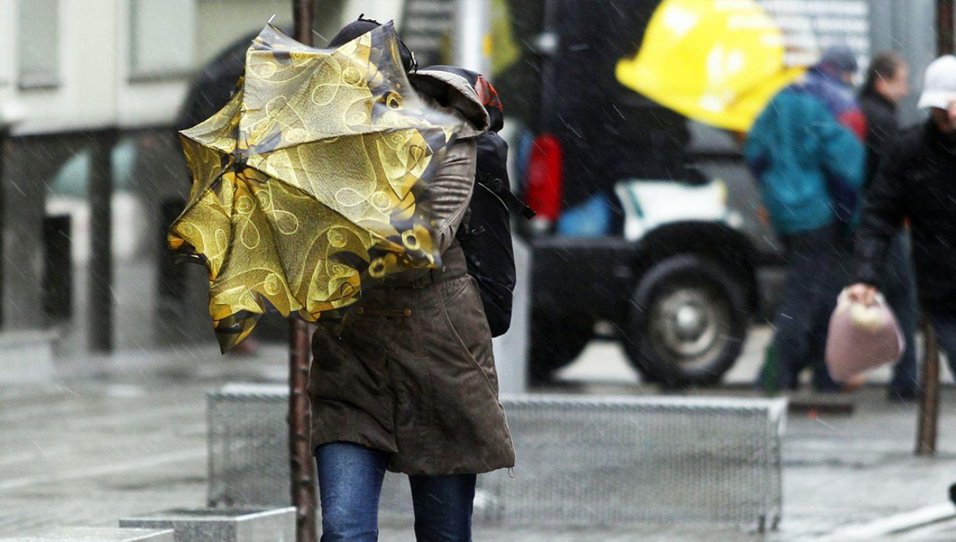 Wiatr pozbawił prądu około 400 tysięcy gospodarstw na wybrzeżu atlantyckim  (fot. arch. PAP/Andrzej Grygiel)