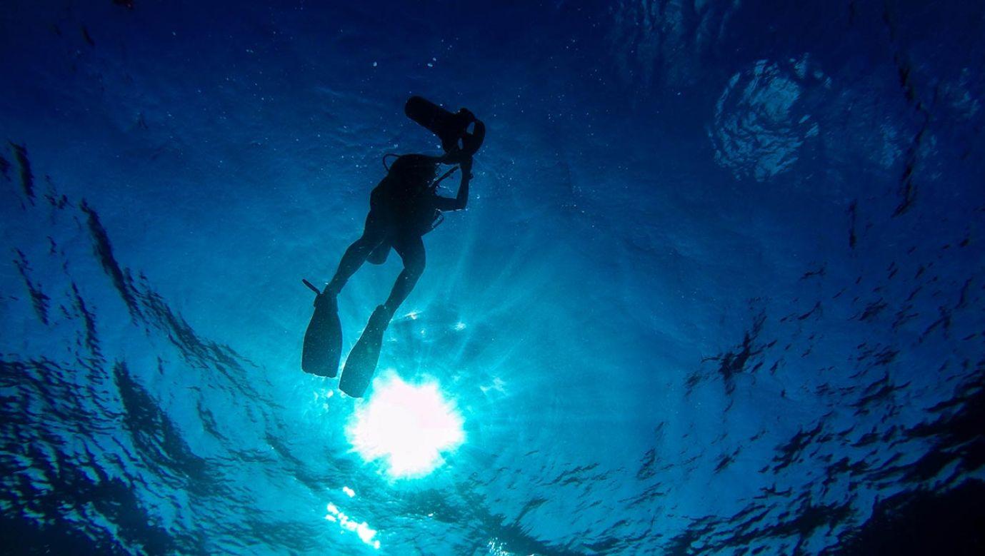 Australijczyk zajmował się łowiectwem podwodnym i nurkował bez zbiornika z tlenem (fot. Shutterstock/LucasGill)