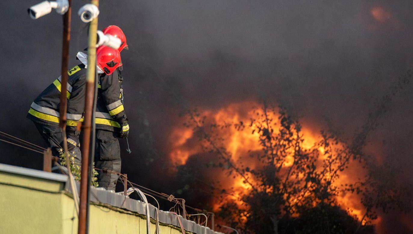 Na miejscu pracuje 14 zastępów straży pożarnej (fot. Shutterstock/Mike Mareen)