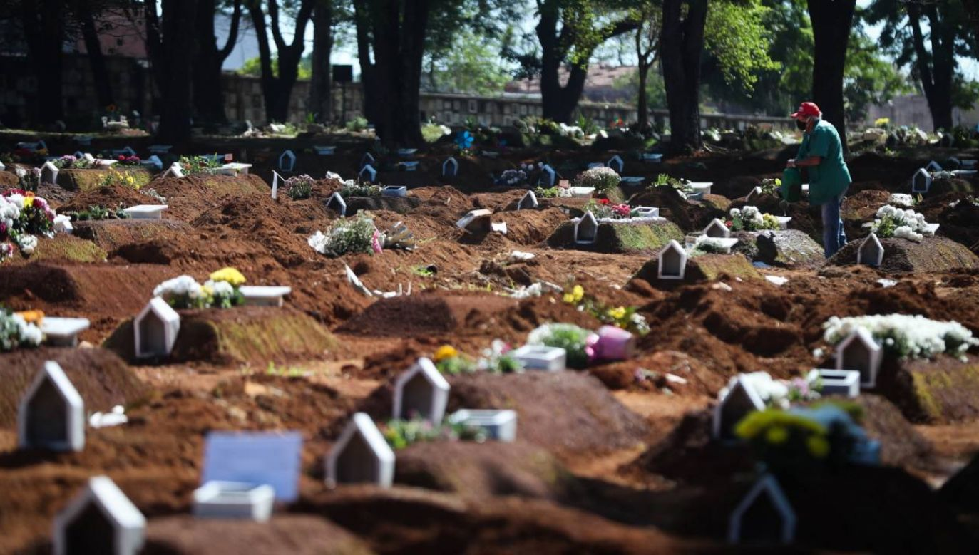 Widok cmentarza Vila Formosa w Sao Paulo (fot. PAP/ EPA / FERNANDO BIZERRA)