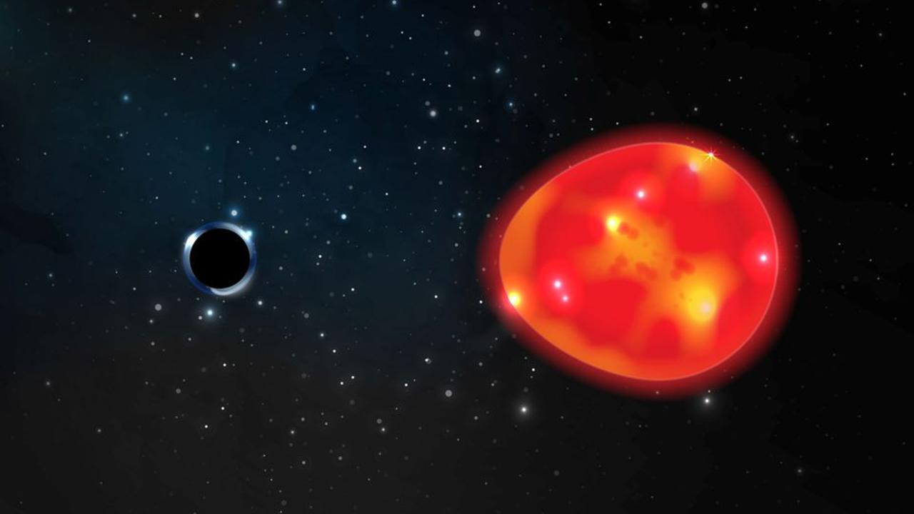 Czarna dziura ma wyjątkowo małą masę (graf. Ohio State University/Lauren Fanfer)