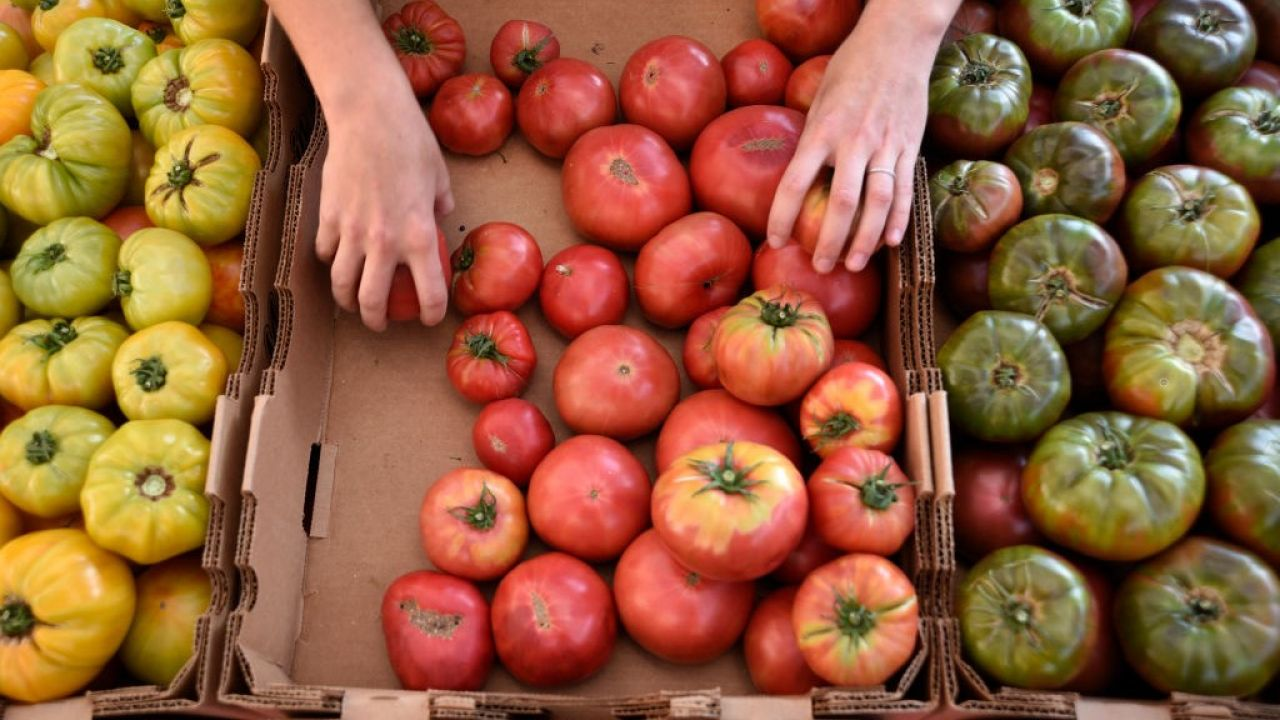 Według naukowców nastąpi znaczący wzrost cen(fot. Robert Alexander/Getty Images)