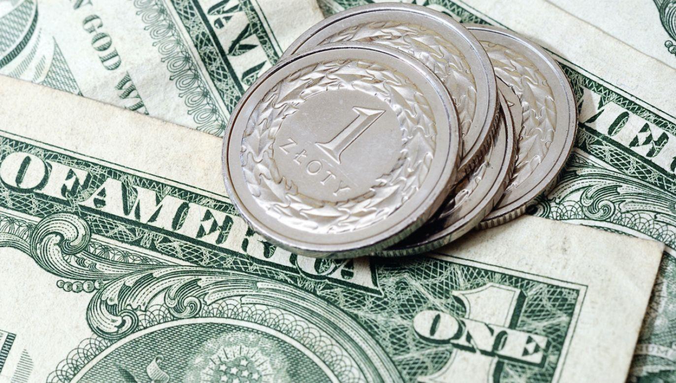 Kursy walut NBP (fot. Shutterstock/pitchr)