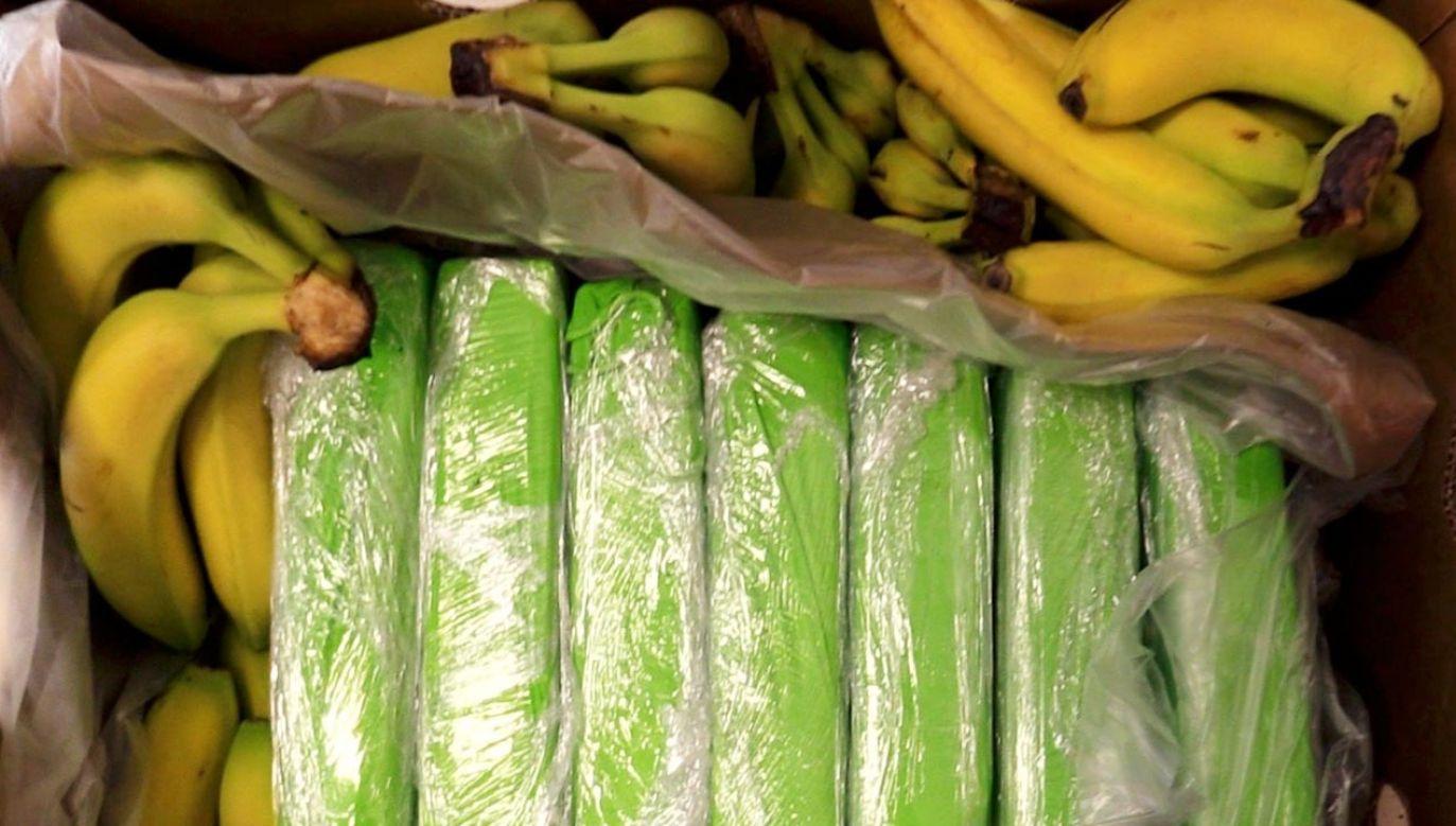 Kokaina zapakowana była w małe zielone paczki (fot. Policja)