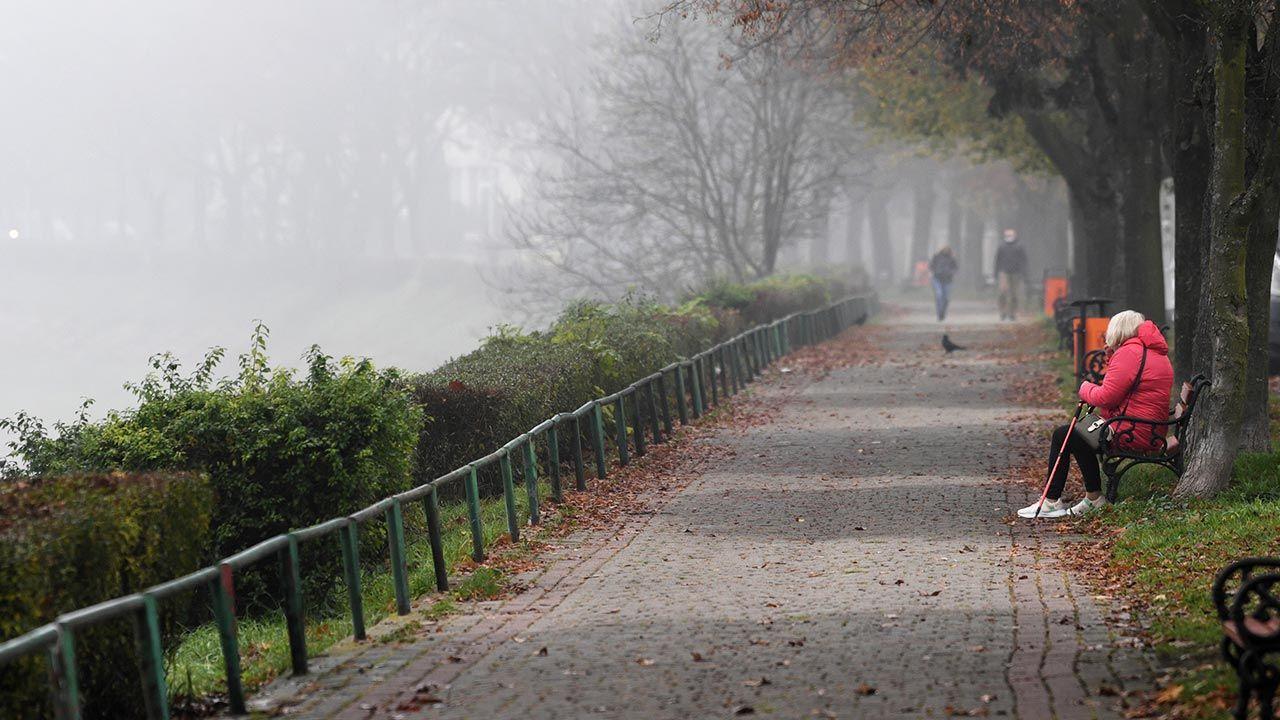 Idzie jesień (fot. PAP/Darek Delmanowicz)