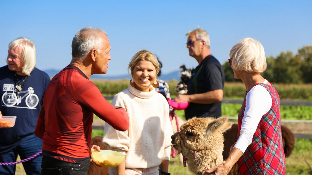 Pierwszą atrakcją, jaką Marta Manowska przygotowała dla seniorów, była wizyta w gospodarstwie hodowlanym, w którym na kuracjuszy czekało mnóstwo uroczych, puszystych alpak. (fot. TVP)