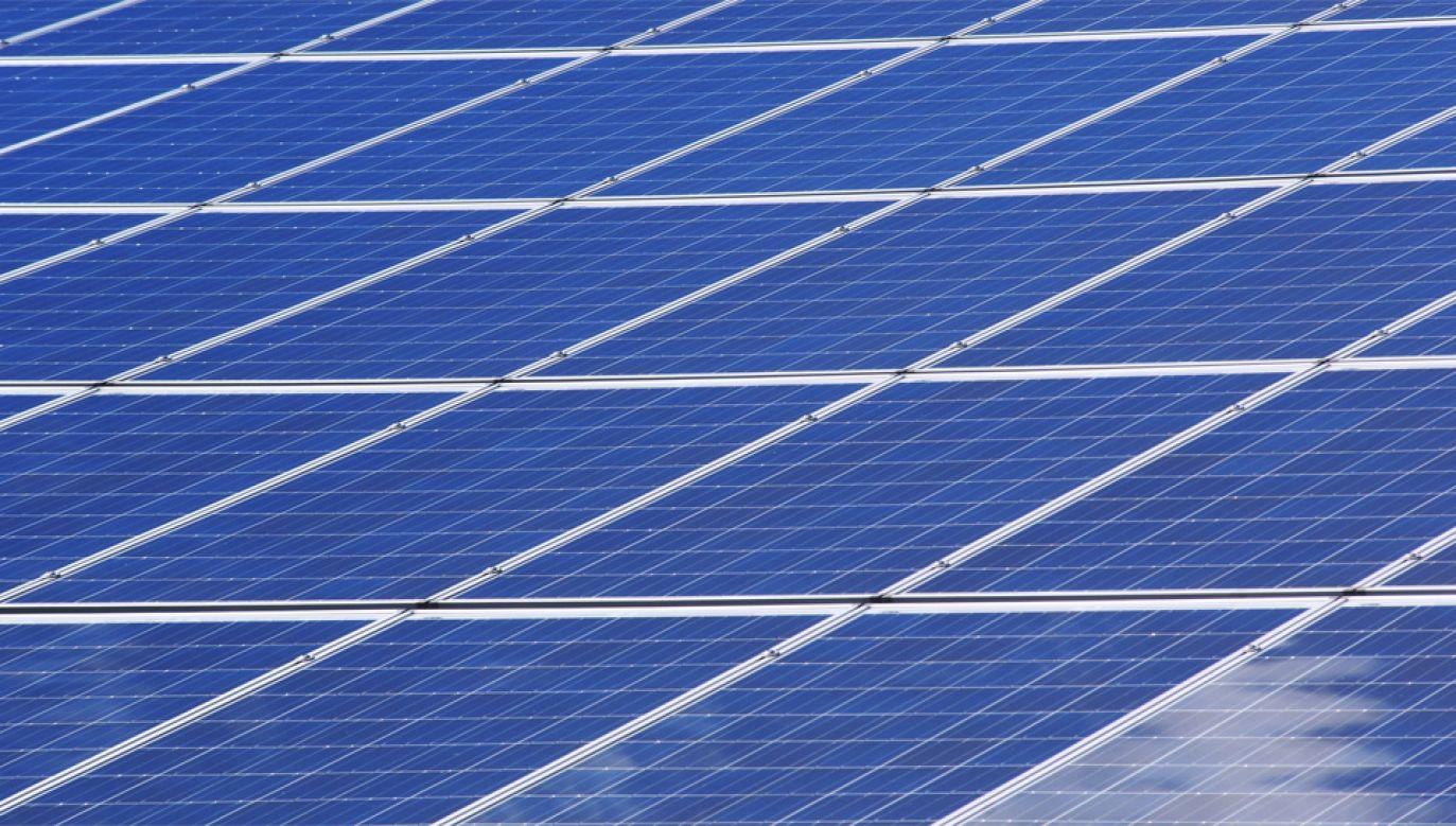 """W ramach programu """"Mój prąd"""" dofinansowywane są inwestycje fotowoltaiczne (fot. Pexels)"""