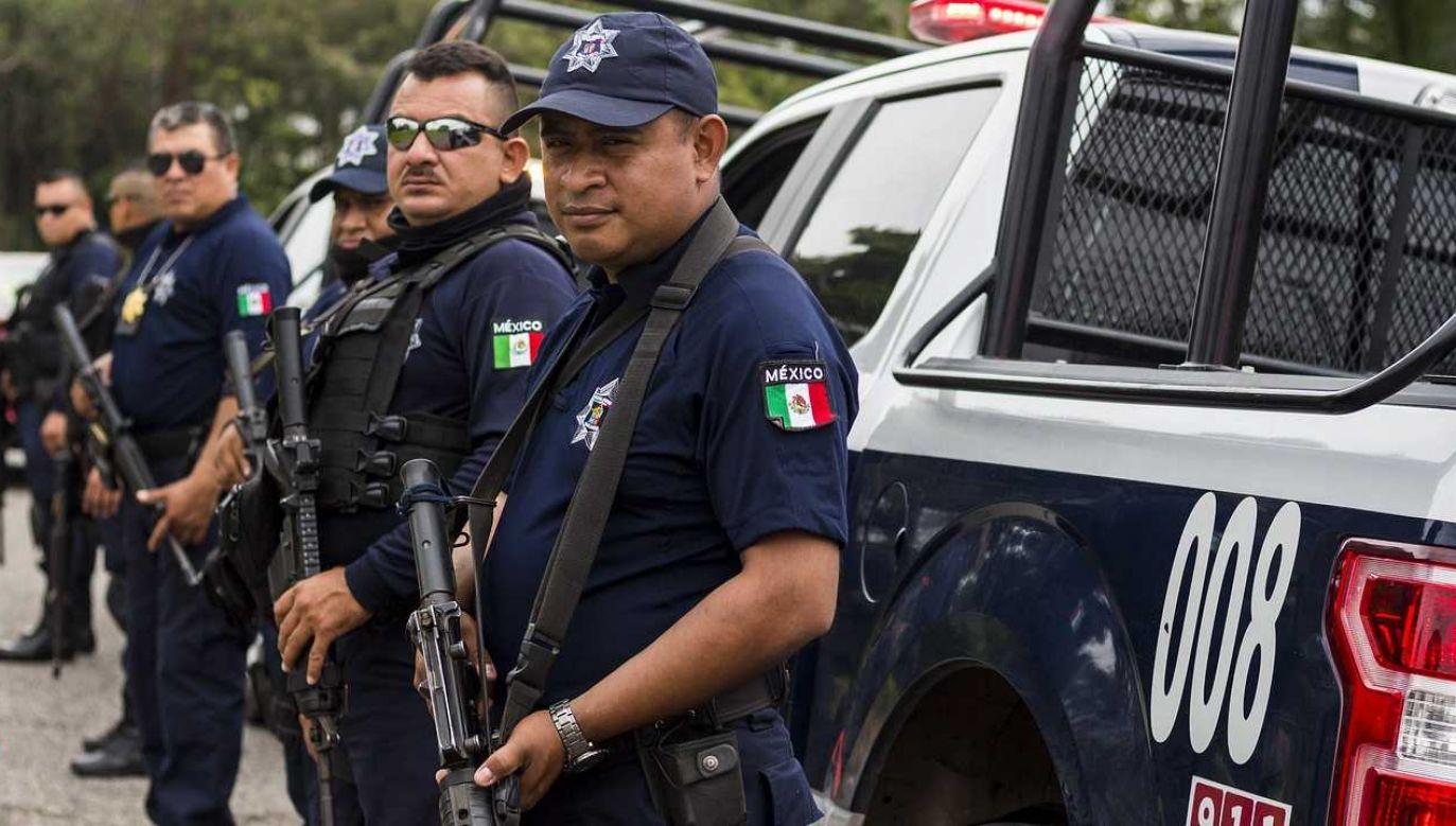 W Meksyku toczy się wojna z kartelami (fot. Pixabay)