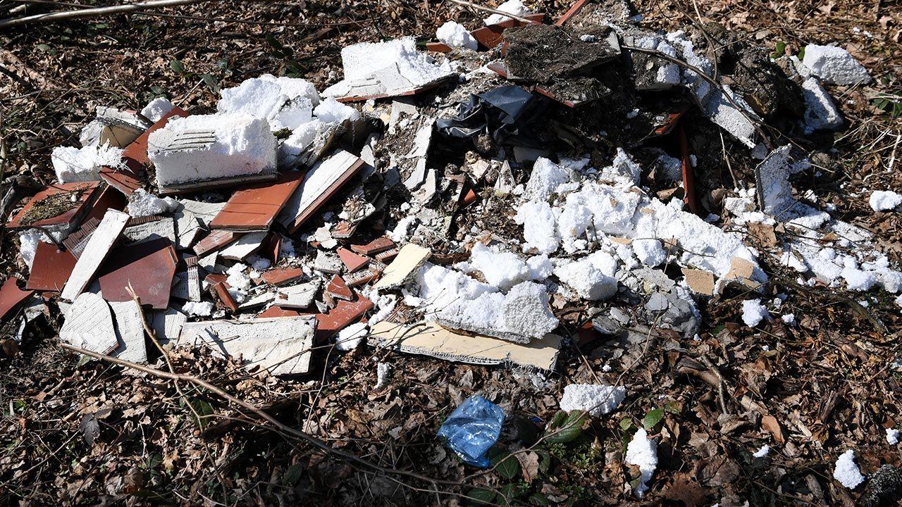 Przez stronę gios.gov.pl można zgłaszać porzucone odpady (fot. PAP/Darek Delmanowicz)