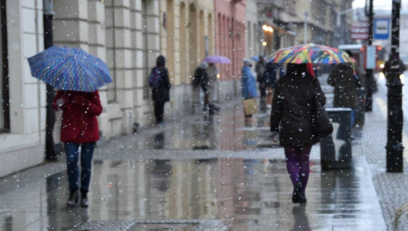 Zima jeszcze nie powiedziała ostatniego słowa (fot. PAP/Radek Pietruszka)