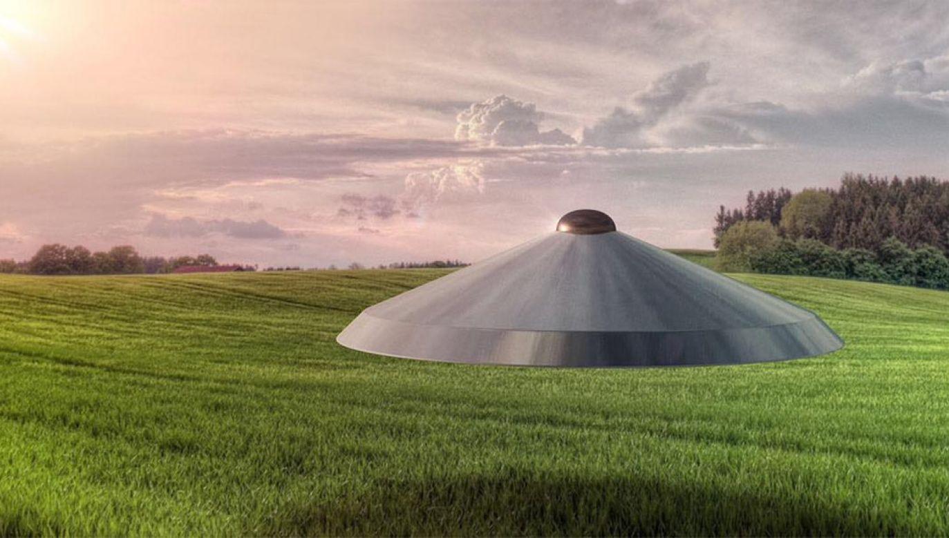 Świadkowie widzieli, jak UFO ląduje w rezerwacie, a potem znika (fot. FB/Westall Flying Saucer Incident)