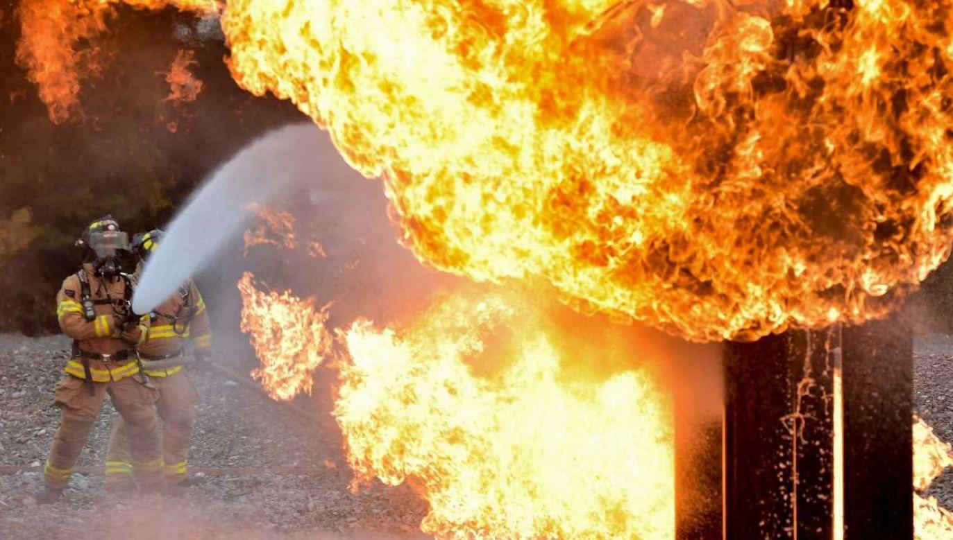 Strażacy ugasili płomienie (fot. Pexels)