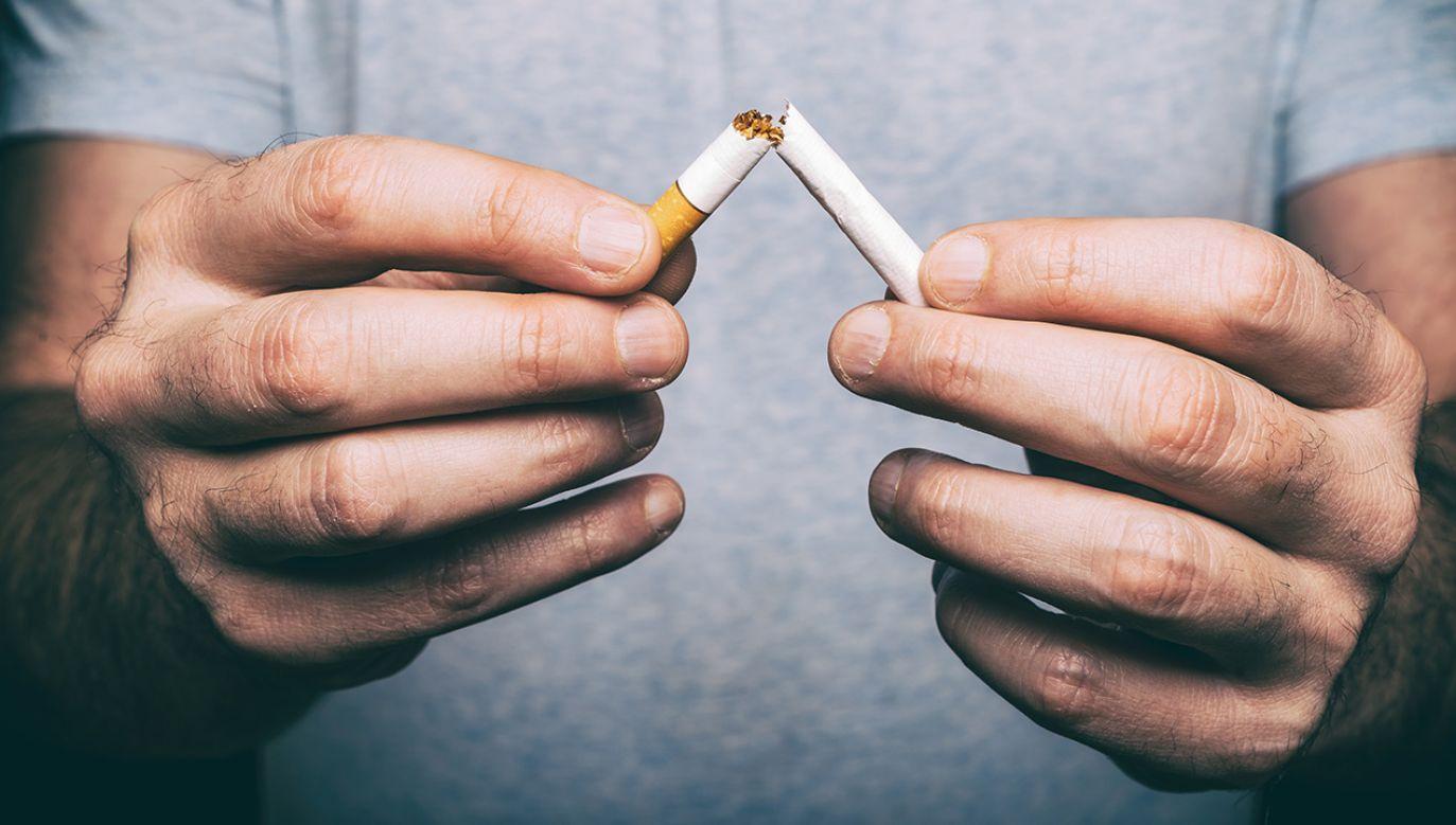 Większość palaczy potrzebuje porad i profesjonalnego wsparcia (fot. Shutterstock/Marc Bruxelle)