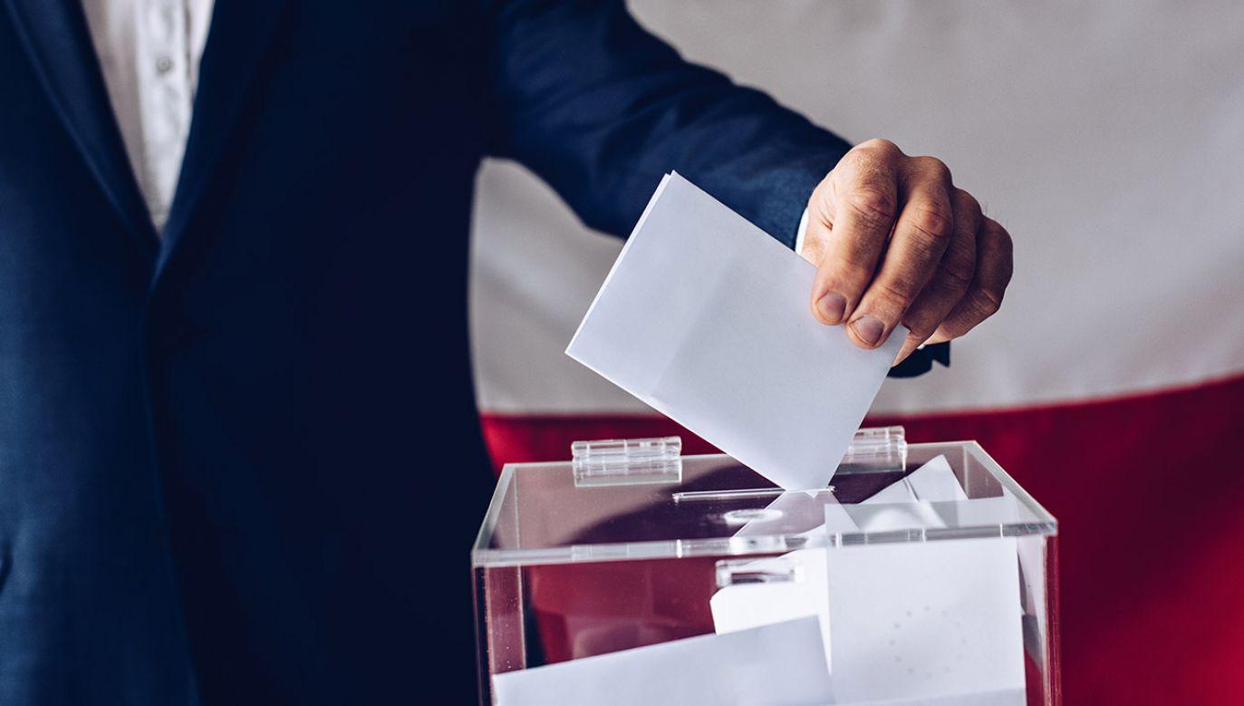 Wybory do Sejmu i Senatu odbędą się 13 października w godz. 7.00-21.00 (fot. Shutterstock/Daniel Jedzura)