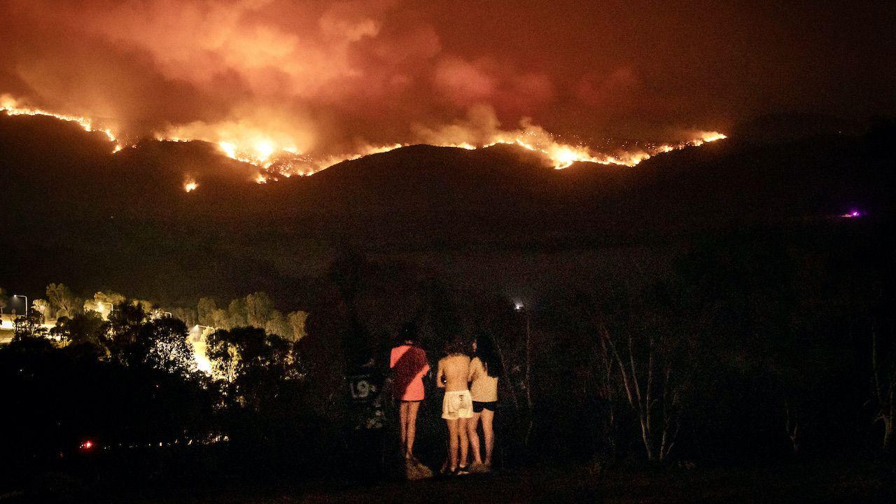 Wzrost oceanicznych glonów przez pożary (fot. Brook Mitchell/Getty Images)