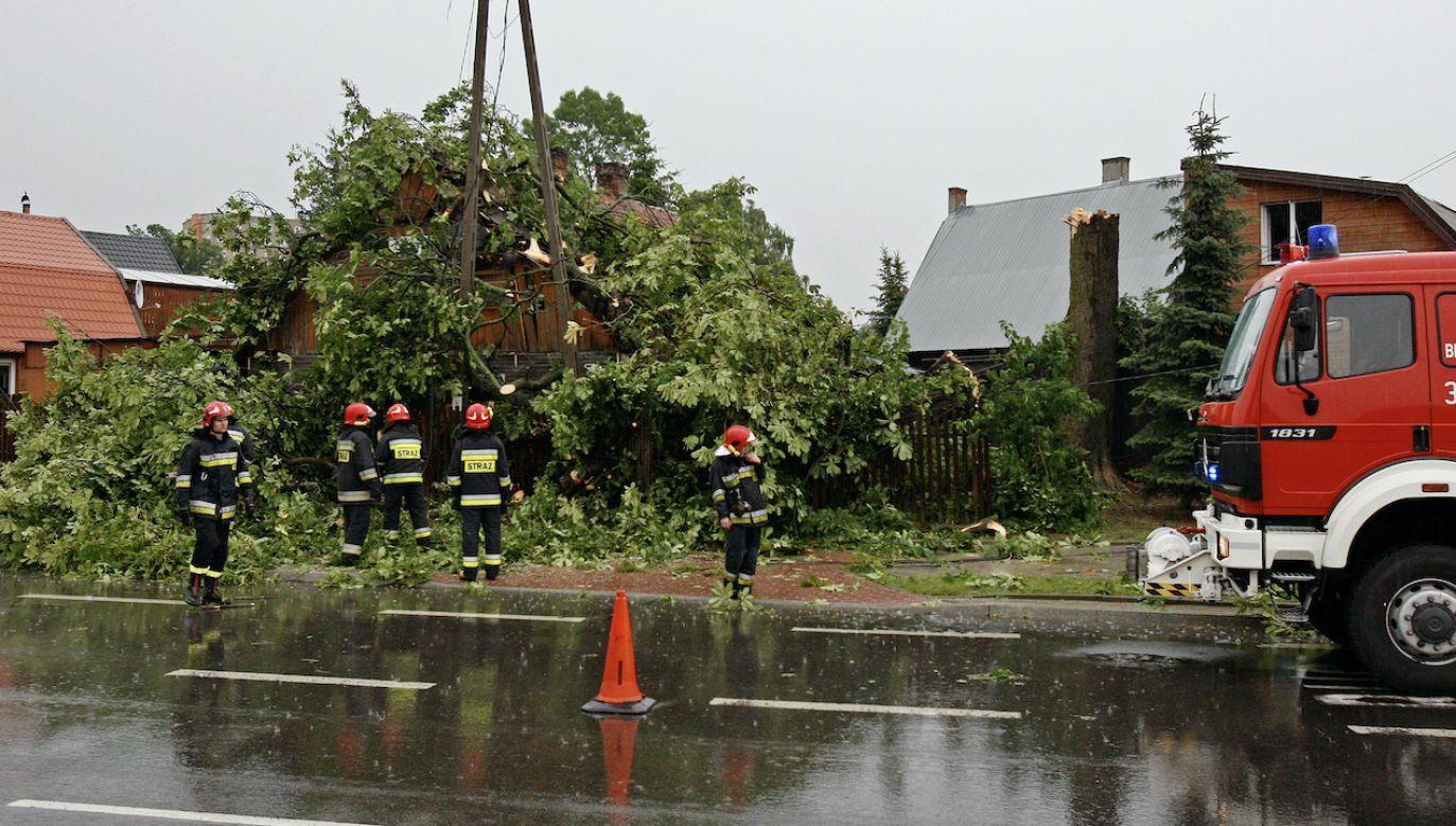 Prognoza pogody – czwartek 13 maja (fot. arch.PAP/Artur Reszko)