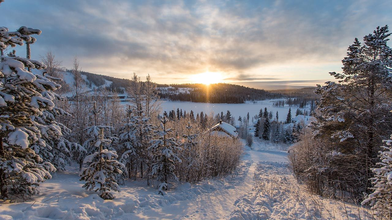 Zimą jest tam nawet -50 stopni Celsjusza (fot. Shutterstock/Oleg Bakhirev)