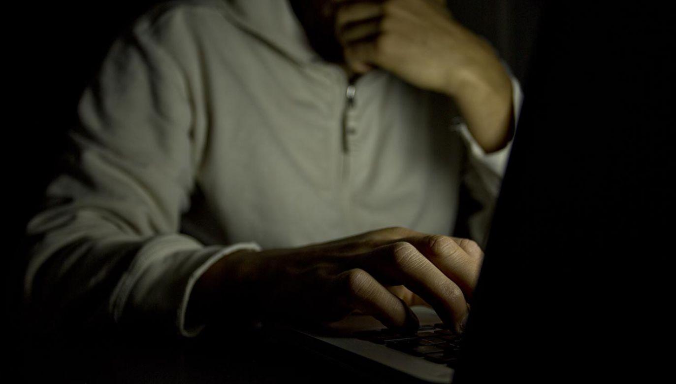 Śledczy rozpracowywali sprawę od kilku miesięcy (fot. Shutterstock/icsnaps)