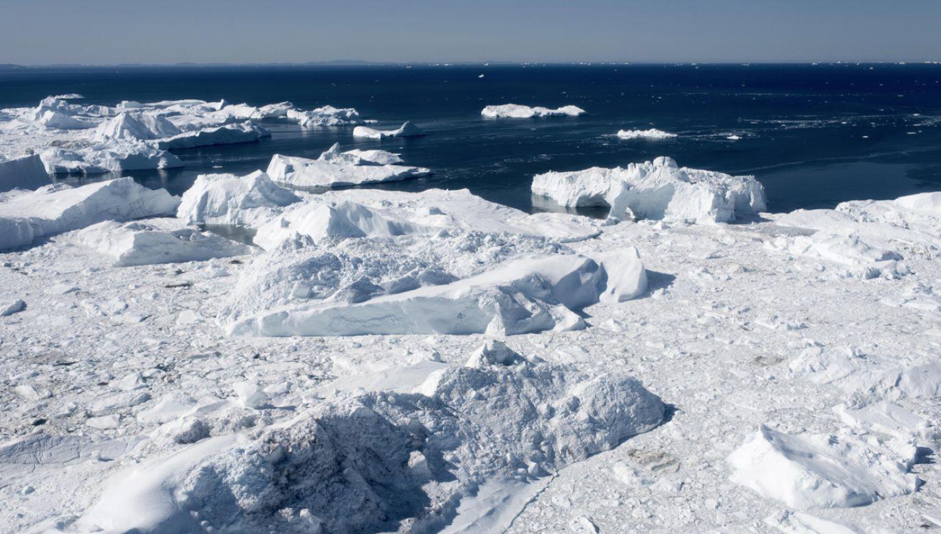 W sierpniu tylko jednego dnia do oceanu wpadło 11 mld ton lodu (fot. PAP/EPA/LINDA KASTRUP)