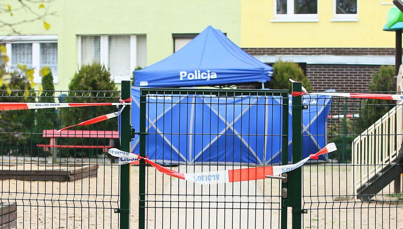 Główny Inspektor Sanitarny w rozmowie z portalem tvp.info o nowych narkotykach, które zabijają (fot. PAP/Tomasz Wojtasik)