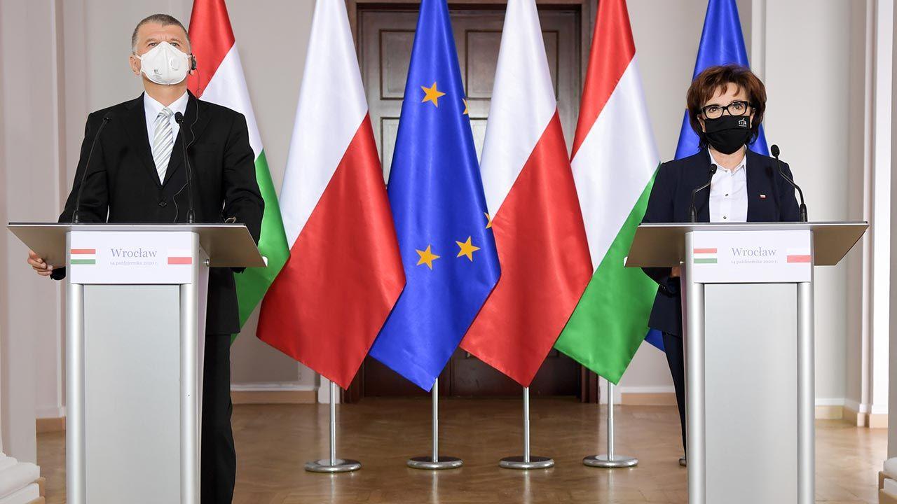"""""""Naszym zdaniem jest to całkowicie sprzeczne z traktatami o Unii Europejskiej"""" (fot. Twitter/Sejm RP)"""