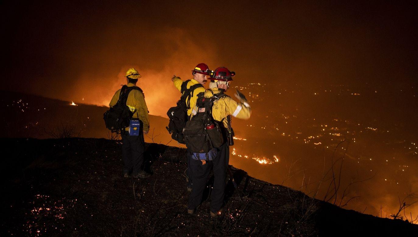 """""""To najodważniejsi strażacy na świecie"""" (fot. PAP/EPA/Etienne Laurent)"""