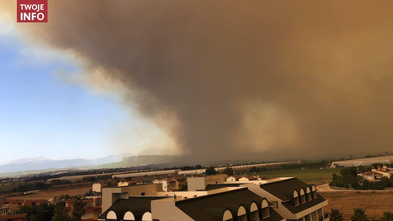 Ogień objął lasy i ewakuowano cztery osady (fot. Twoje Info)