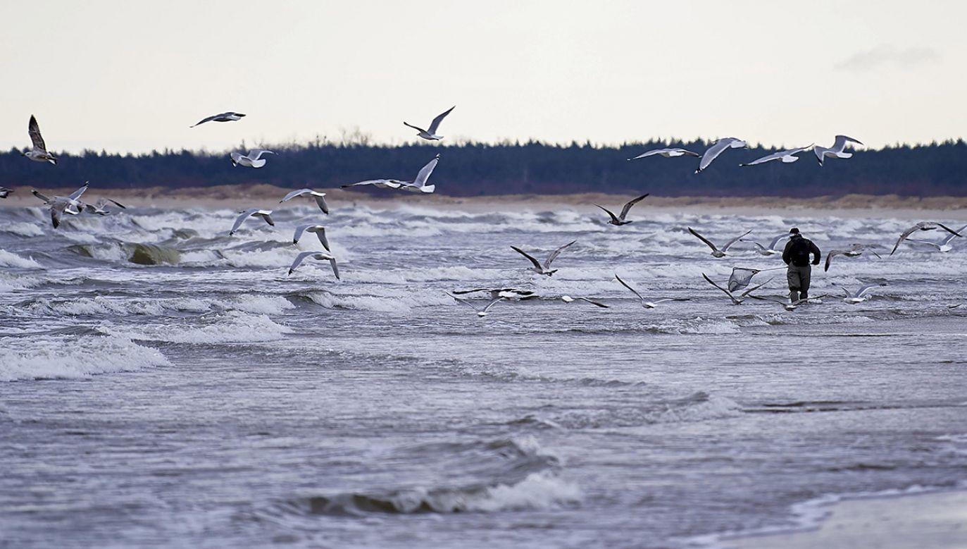 Wiadomo, jak długo utrzyma się najsilniejszy wiatr (fot. arch.PAP/Adam Warżawa)