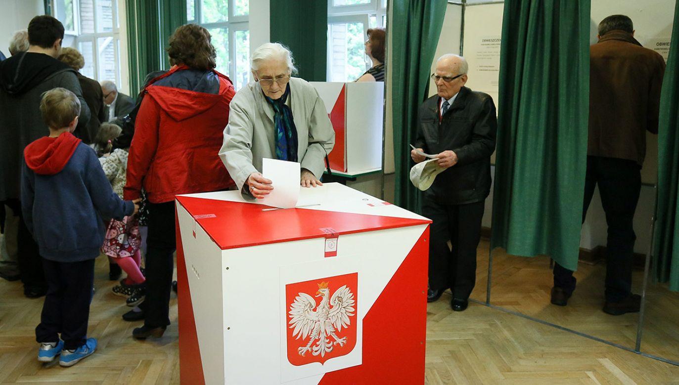 Wybory prezydenckie w Polsce odbędą się prawdopodobnie w maju 2020 roku (fot. arch.PAP/Paweł Supernak)