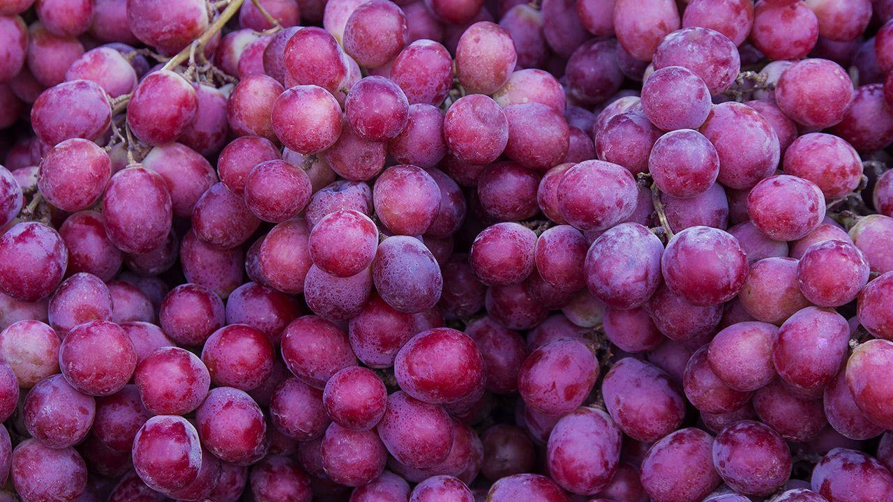 Owoce klasy premium regularnie osiągają w Japonii zawrotne ceny (fot. Shutterstock)