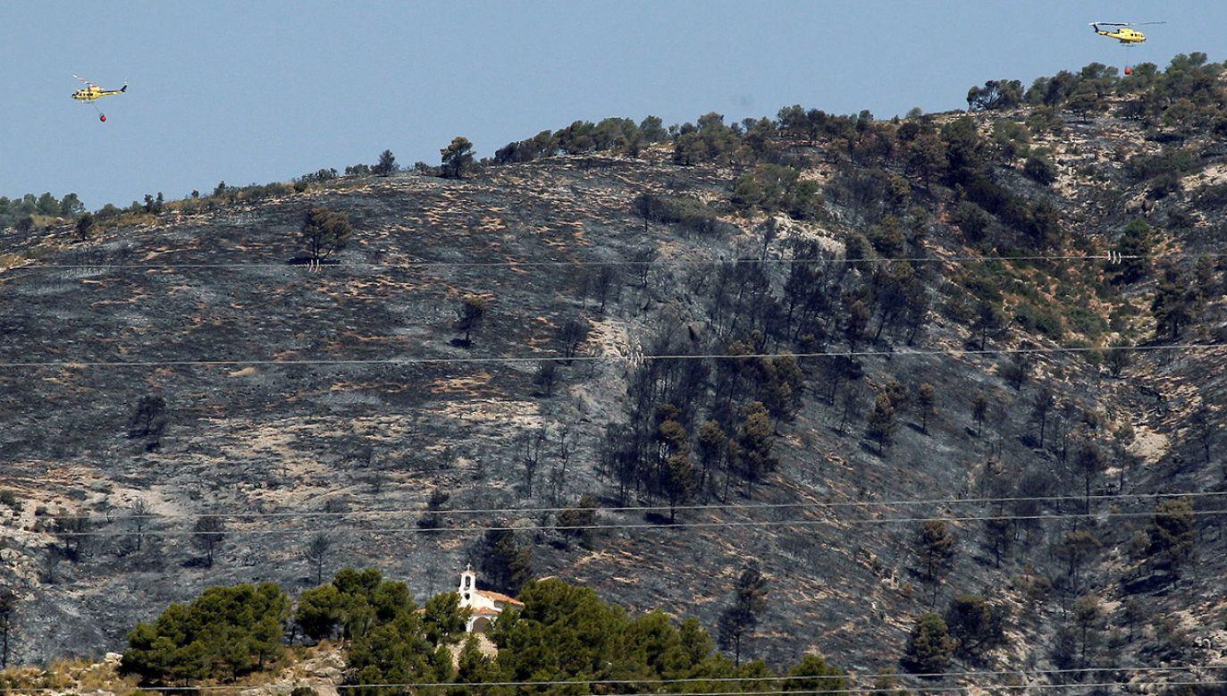 Pożar objął lasy na terenie gminy Beneixama w prowincji Alicante (fot. PAP/EPA/MORELL)