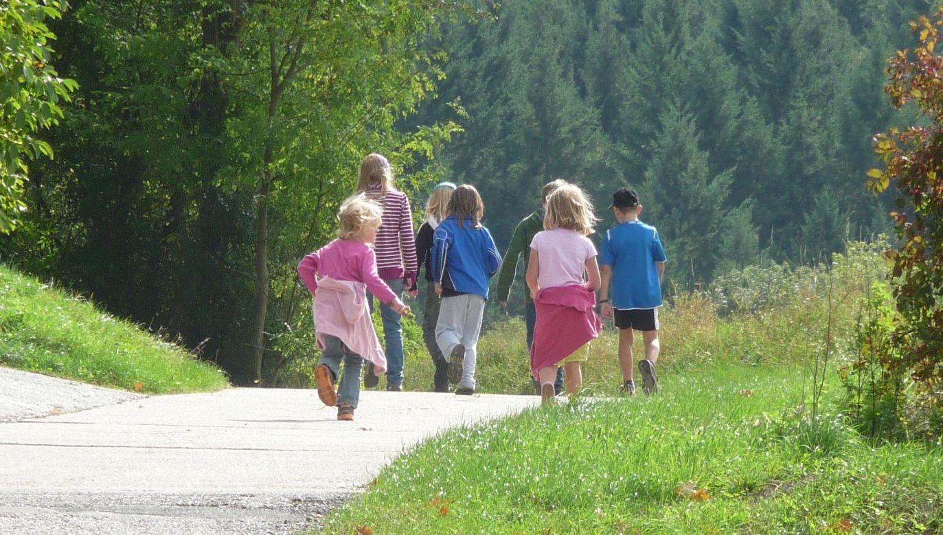 Organizatorzy podkreślają, że pobyt w górach ma duże znaczenie terapeutyczne dla dzieci (fot. EME/pixabay)
