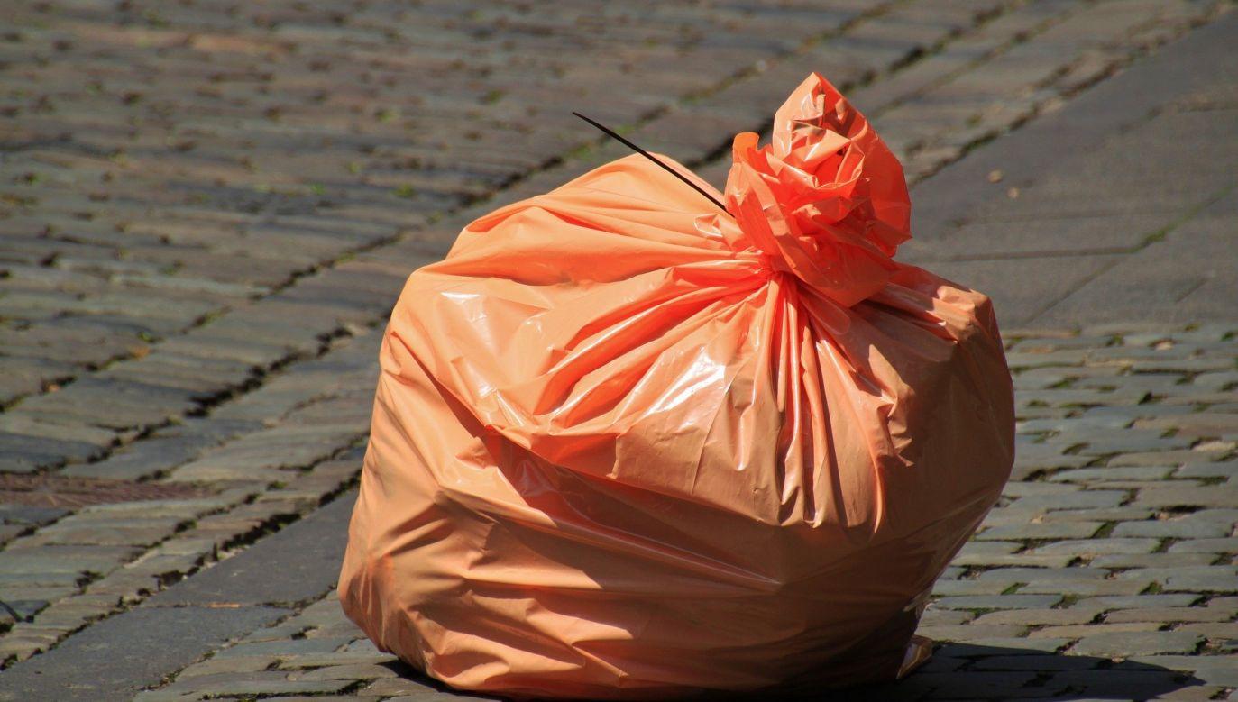 Teraz przy naliczaniu opłat za odbiór śmieci w mieście stosuje się metodę mieszaną (fot.pixabay.com/ cocoparisienne)