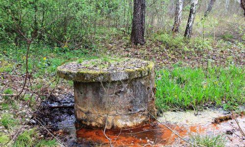 W latach 60. XX w. gaz z mofety wykorzystywano do hodowli alg. Źródło zostało ujęte w betonowe kręgi o średnicy i głębokości około 1 metra, a ulatniający się z niego dwutlenek węgla za pomocą rurek trafiał do donic, gdzie rosły. Badano wykorzystanie alg do produkcji żywności dla radzieckich kosmonautów.  Eksperyment został porzucony, bo algi  bowiem za dużo białka i powodują biegunki.  Kręgi zostały zakryte betonowymi pokrywami i zasypane. Na zdjęciu mofeta przed rewitalizacją. Fot. Janusz Kieblesz