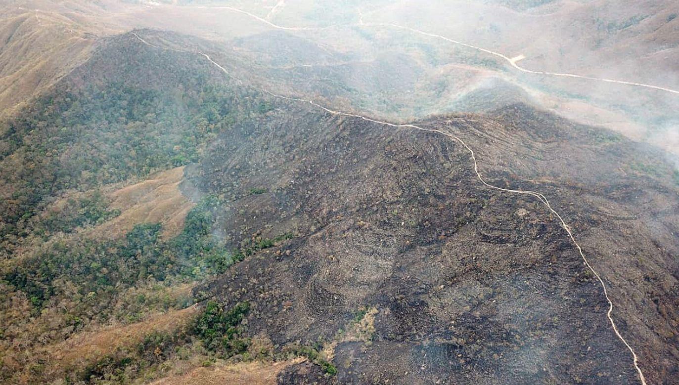 Zdjęcie pożaru Parku Narodowego Chapada dos Guimaraes w Brazylii  (fot. PAP/EPA/MATO GROSSO FIREFIGHTERS)