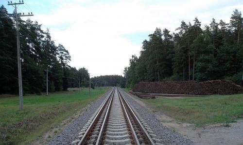 Rail Baltica na Litwie (tory w splocie). Fot. Gediminas z litewskiej Wikipedii - lt.wiki, GFDL, https://commons.wikimedia.org/w/index.php?curid=29488075
