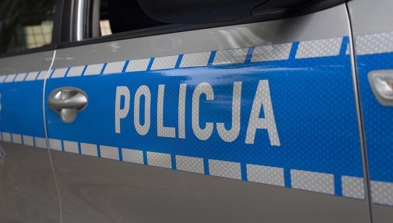 Policja apeluje do mieszkańców o zwrócenie uwagi na pojazdy, które mogłyby mieć uszkodzony przód  (fot. pixabay.com/arembowski )
