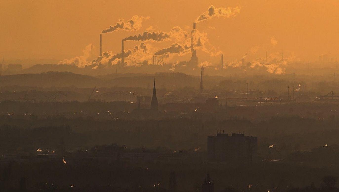 Wielu naukowców spodziewało się w tym roku dużego spadku emisji CO2 (fot. Lukas Schulze/Getty Images)