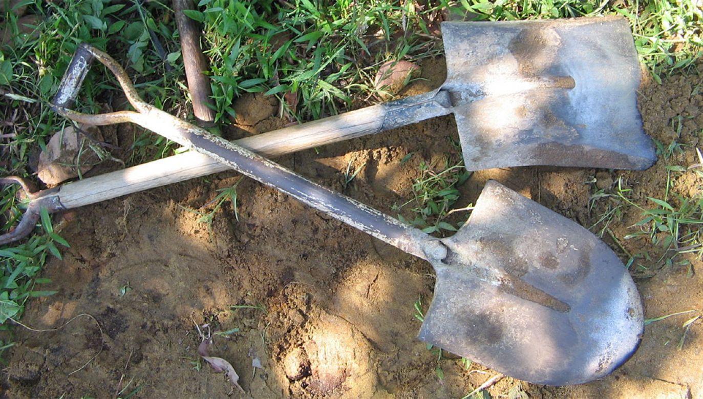 Mężczyzna został aresztowany pod zarzutem nielegalnej ekshumacji (fot. Wiki GFDL/Yosri)